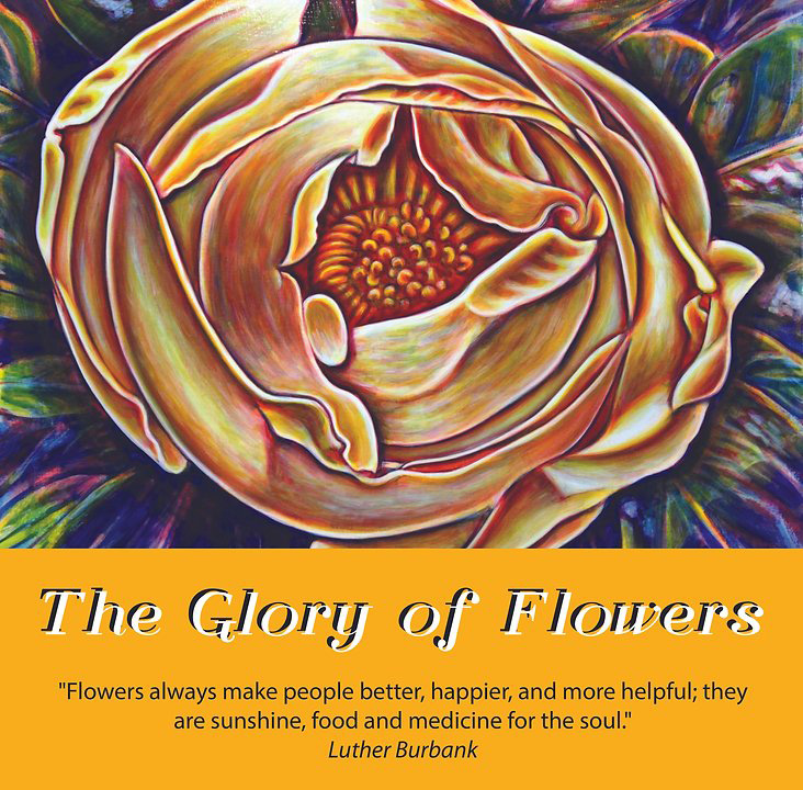 The Glory of Flowers